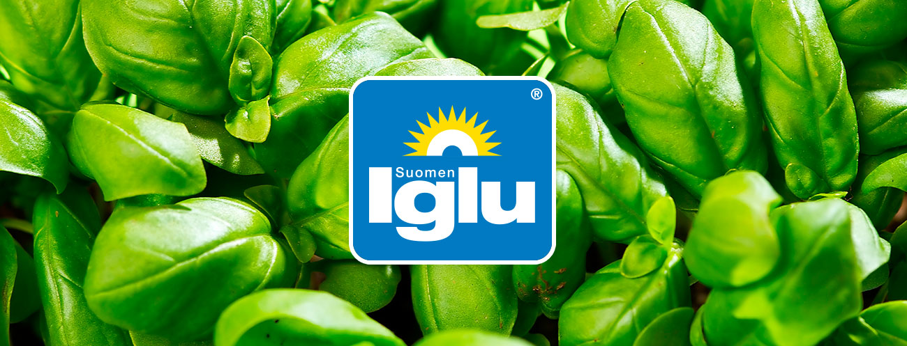 Suomen-iglu_tausta-logo